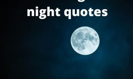 best 50 good night quotes