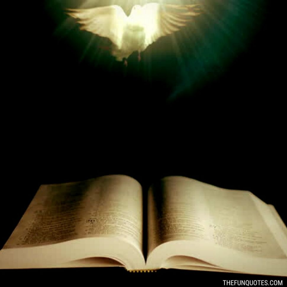 https://www.shutterstock.com/tr/video/clip-17508364-holy-bible-dove-peace-illuminated-by-beam