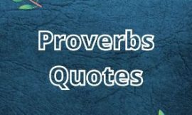 30 Proverbs Quotes from Successories | Proverbs ideas in 2021 | Proverb Sayings | Inspirational Quotes | 30 Enlightening Proverbs