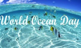 World Ocean Day Quotes : 10 + Great Quotes to Celebrate World Oceans Day | Top 16 World Oceans Day 2021: Quotes, Wishes and Messages | thefunquotes.com