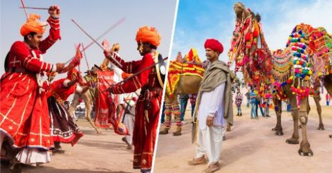 Wonderfull Quotes and Sayings About Camels | Bikaner Camel Festival: Inside India's Festivals | Bikaner Camel Festival 2021 | Famous Camel Festival of Bikaner & Pushkar | thefunquotes.com
