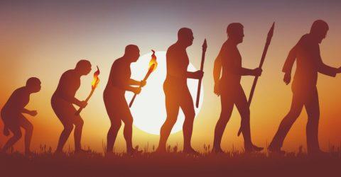 30+ Evolution Sayings and Evolution Quotes   30 Inspirational Quotes On Evolving   Evolution Quotes   thefunquotes.com
